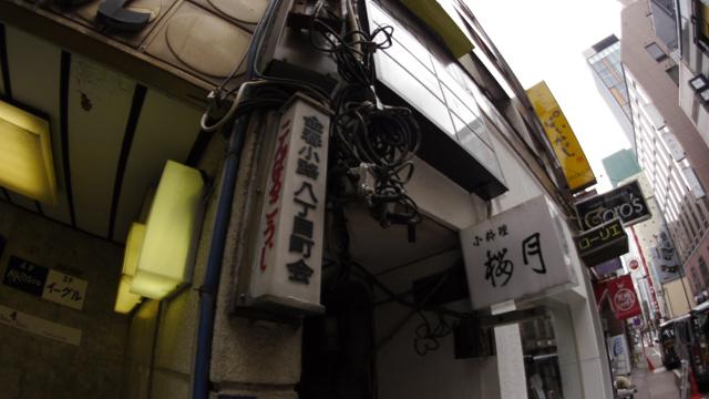 2012ginroji_05.jpg
